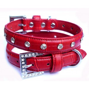 Poppy Croc Collar & Lead Set